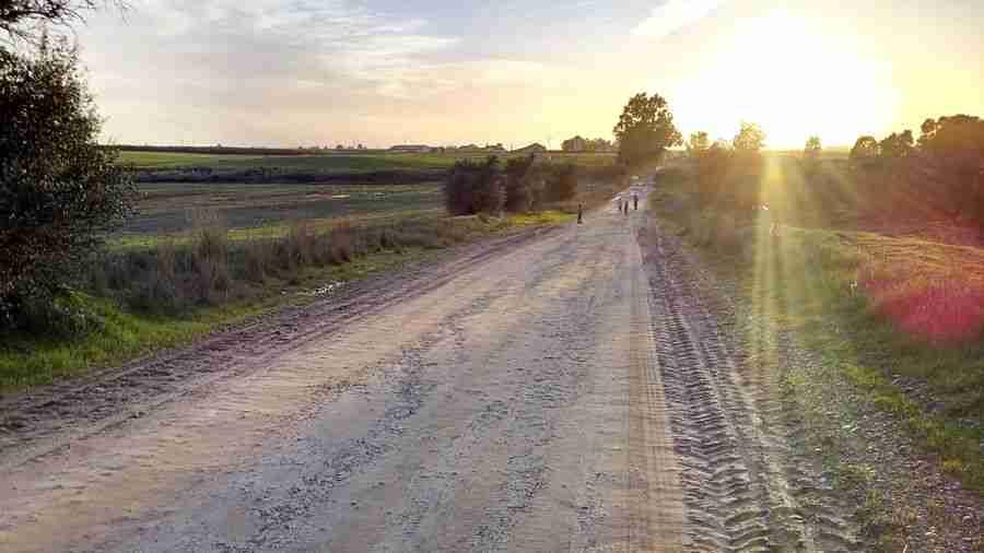 Carretera de tierra entre los campos.