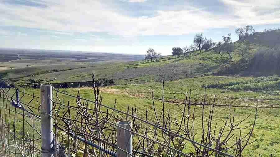 Vista de una sierra verde, y de un campo de cultivo, en un día de sol