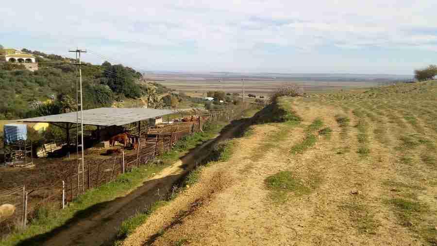 Vista de campos de cultivo, con césped y la llanura al fondo
