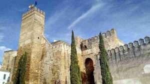 En esta serie de mis Escapadas en Bici de Sevilla: Carmona, puedes ver parte de la Puerta de Sevilla en Carmona, la muralla romana con bonitos pinos en frente.